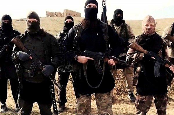 Шакалы войны: как ИГИЛ взращивает в своих лагерях поколение юных убийц