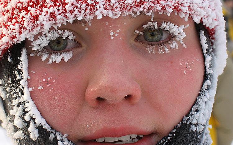В России учителя вывели на мороз детей в сандаликах и платьицах