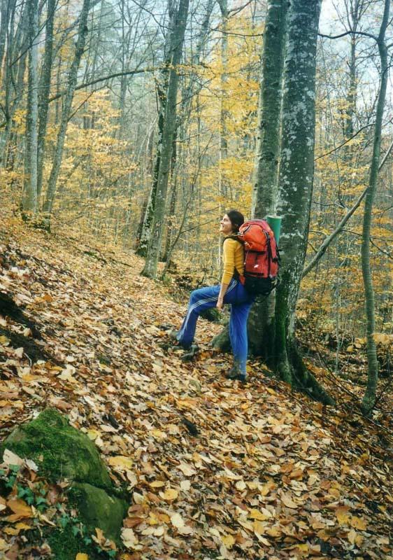 http://www.mountain.ru/climber/route/2004/monastyri/img/po_kovru.jpg