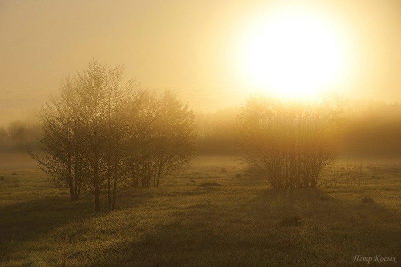 Пушкинские Горы Пушкинские Горы, красивые места, пейзаж, природа, путешествие, пушкин