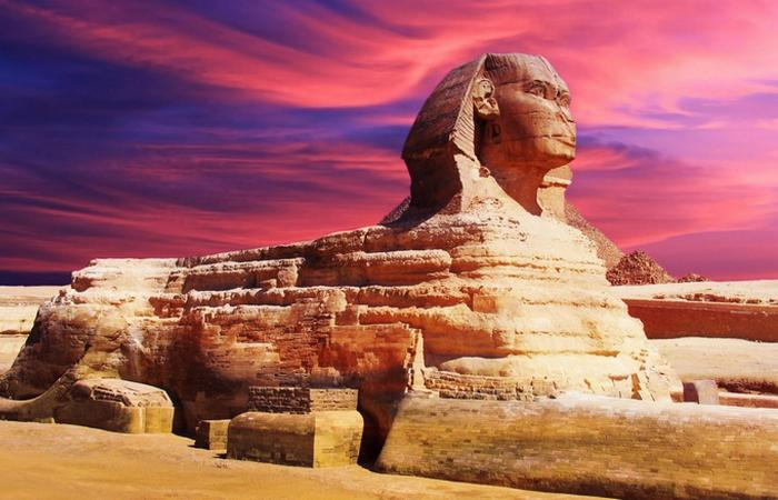 10 фактов о священных животных, которым поклонялись в Древнем Египте