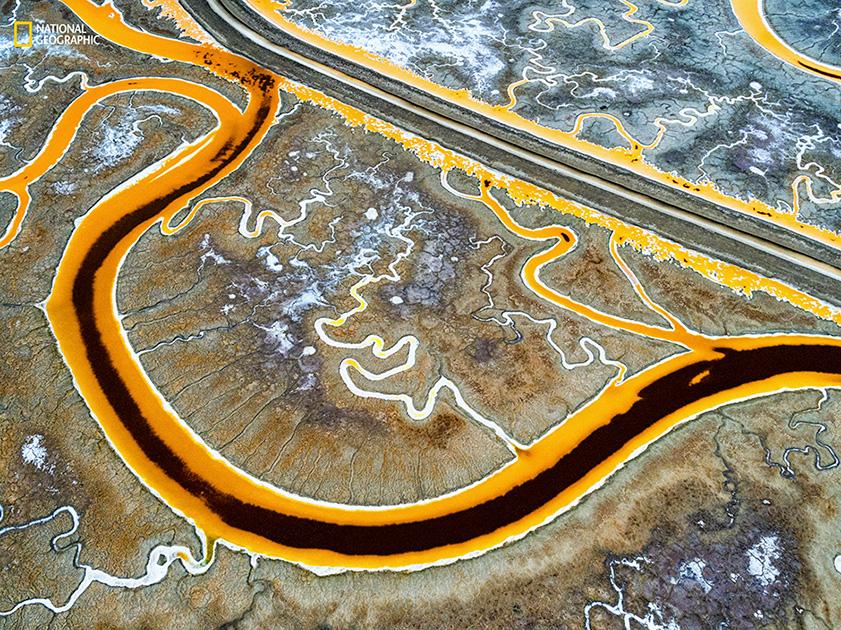 Лучшие фото природы, выбранные National Geographic