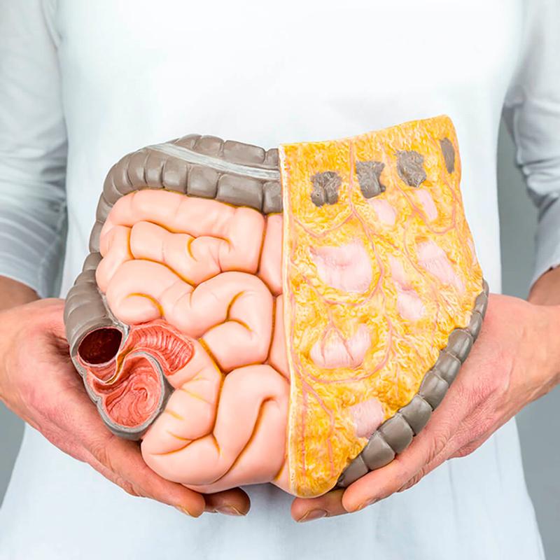 Почему висцеральный жир опасен и как от него избавиться