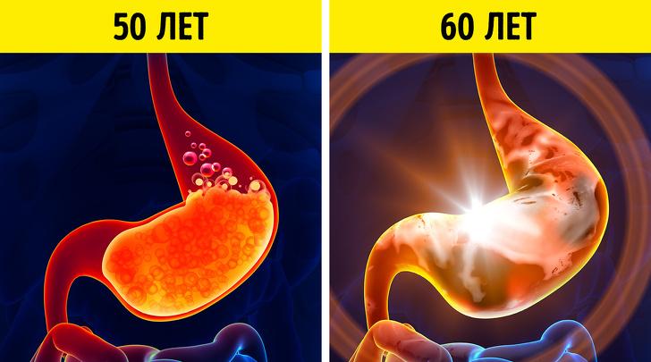 26 неизбежных изменений в организме, которые мы можем наблюдать каждые 10 лет