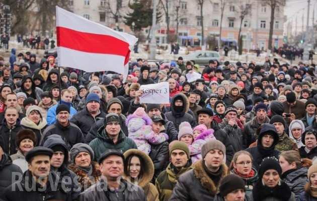«Вешайте всех и сразу»: украинский нацист дал совет майданящим белорусам