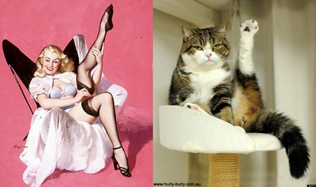 31 причина, почему кошка лучше жены