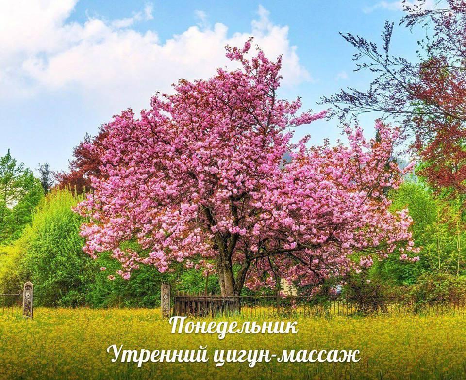 УТРЕННИЙ ЦИГУН-МАССАЖ С ПОНЕДЕЛЬНИКА ПО ВОСКРЕСЕНЬЕ