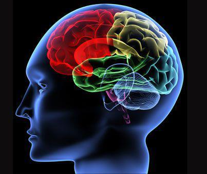 15 упражнений для стимуляции работы мозга
