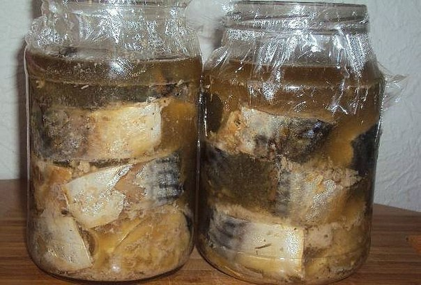 Как приготовить консервы из скумбрии в домашних условиях