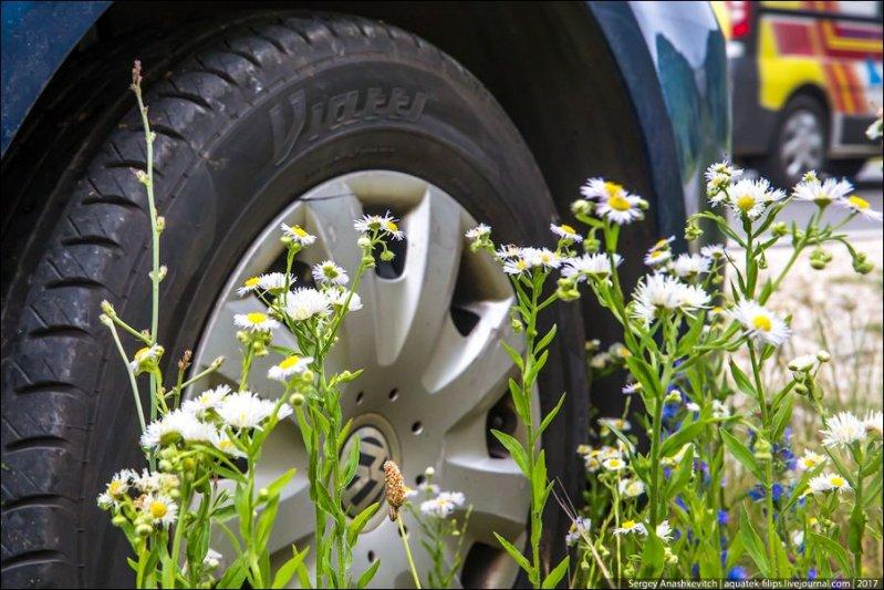 Использование шипованных шин в Сербии запрещено, но в зимний период с 1 октября по 1 апреля обязательна зимняя резина. авто, автопутешествие, движение, дороги, путешествие, сербия, фото, фоторепортаж