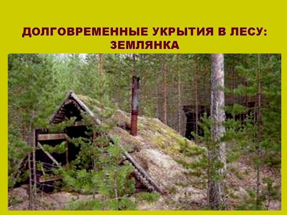 Укрытие в лесу своими руками
