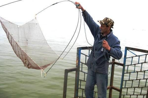 Паук для ловли рыбы