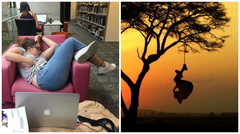 Девушка уснула в библиотеке: битва фотошоперов
