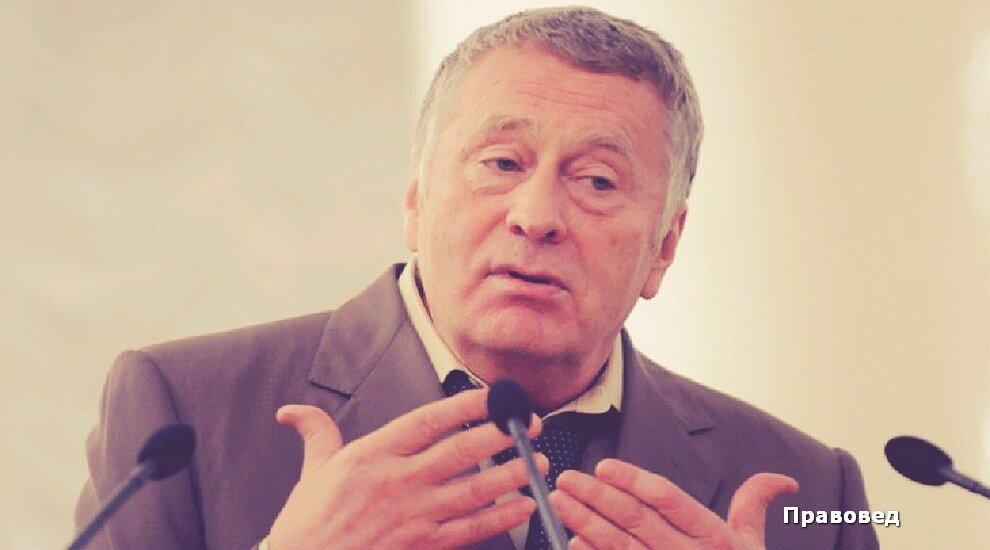 """Жириновский задался вопрос: """"Где находятся деньги России и куда они идут?"""""""
