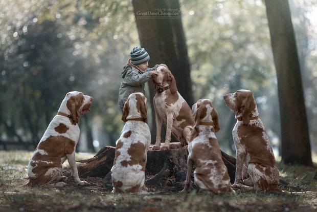 Маленькие дети и их большие собаки: добрый фотопроект, который трогает сердце