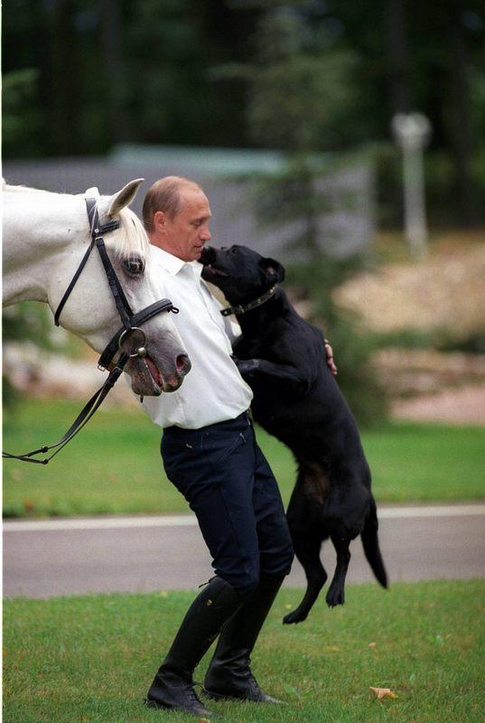 """Путин: """"Как 200 наших отмете…"""