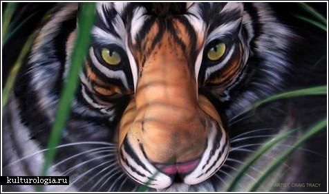 Китайский тигр из трех обнаженных тел.