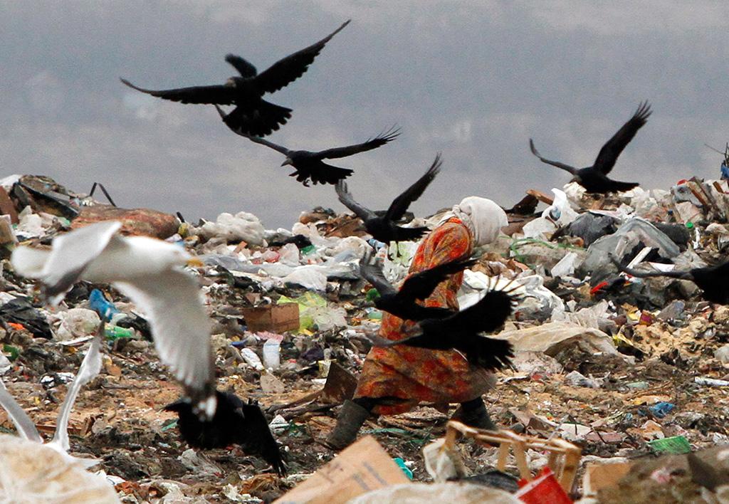 Мусор...мусор...ТБО...