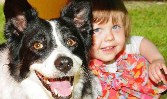 Собака предупредила врачей о тяжёлой болезни ребёнка животные, рак, ребёнок, собака, факты