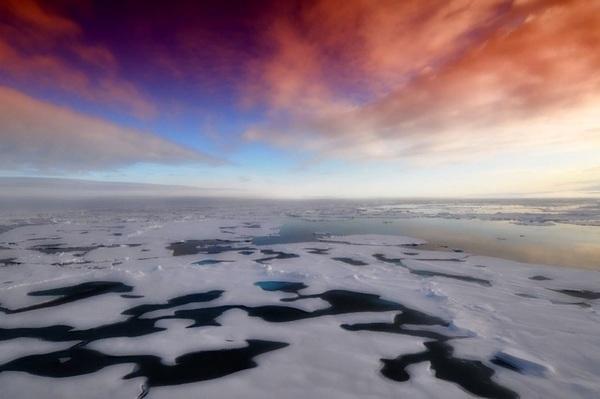 Ученые предупредили о глобальном наводнении из-за таяния льдов Антарктики
