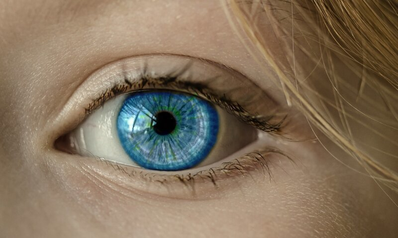 Почему у людей разный цвет глаз? гетерохромия, глаз, почемучка, природа, уникальность, цвет