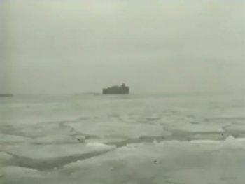 Петровские форты