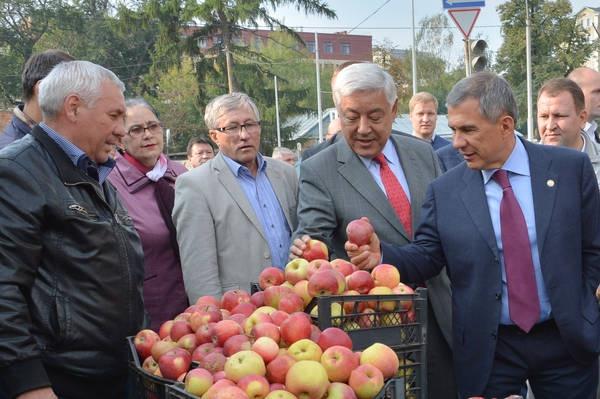 Пострадавшим вкладчикам банков Татарстана помогут землей