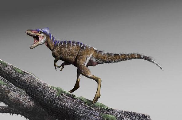В США обнаружены окаменелости самого маленького в мире тираннозавра