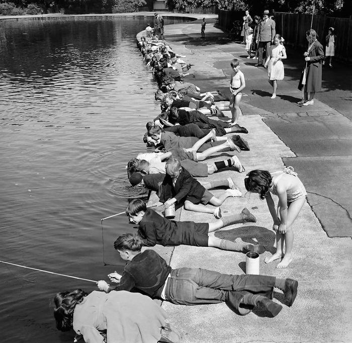 36. Дети на рыбалке, Парк Виктории, Лондон, 1953 год детство, прошлое, фотография