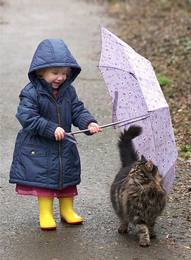 Очаровательные фото доказывающие, что каждому ребенку нужна кошка