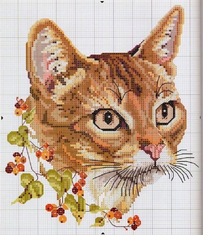 Вышивка крестом котенок для начинающих 45