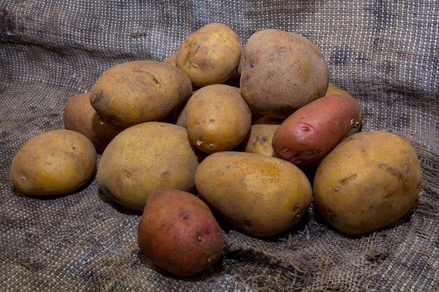 4 основные ошибки при хранении картофеля