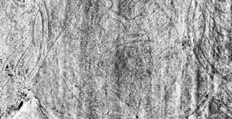 Восстановлен единственный прижизненный портрет Ивана Грозного