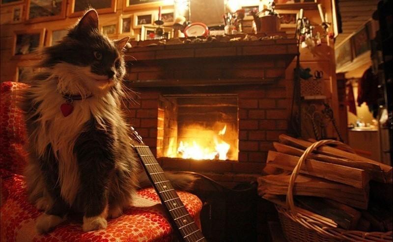 Зима, и все замёрзли звуки...