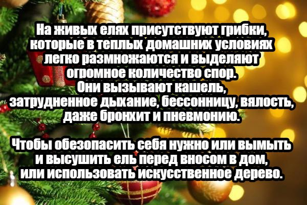 Запись за 14.12.2017 11:00:00 +0200