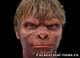 Человек + обезьяна: эксперименты продолжаются?