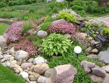 Многолетние цветы для альпийских горок и рокариев