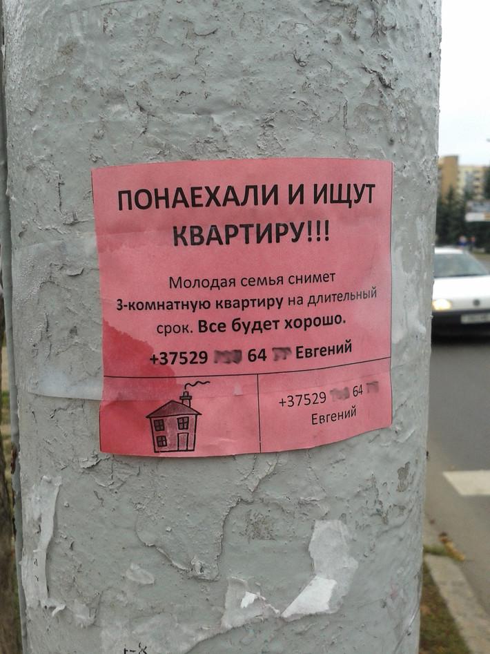 «Понаехали и ищут квартиру» — работают ли креативные объявления о съеме жилья