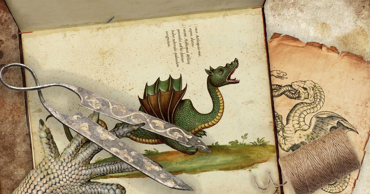 Поймали дракона. Что скрывают чудища из древних музеев?