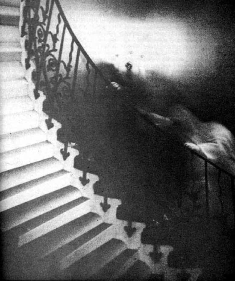 """4. Призрак """"Тюльпанной лестницы"""" загадка, мистика, явление"""