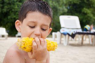 Осторожно, беляши. Как поесть на пляже и остаться в живых