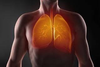 Народное средство от болезней легких