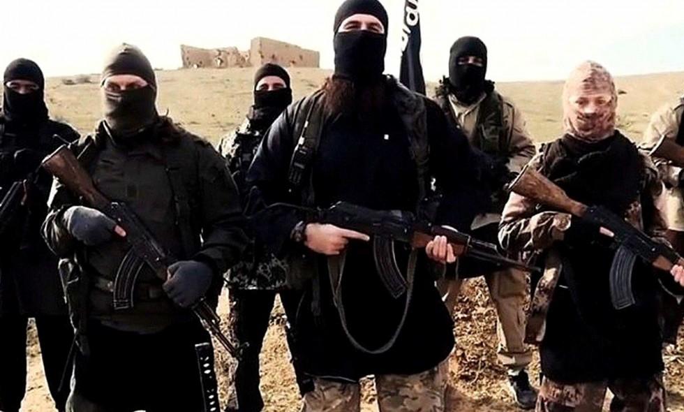 The Hill: Задержанных в Сирии боевиков нужно отправить «по домам»