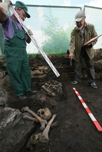 Старинныйзамок времен крестоносцев  раскопали в Литве