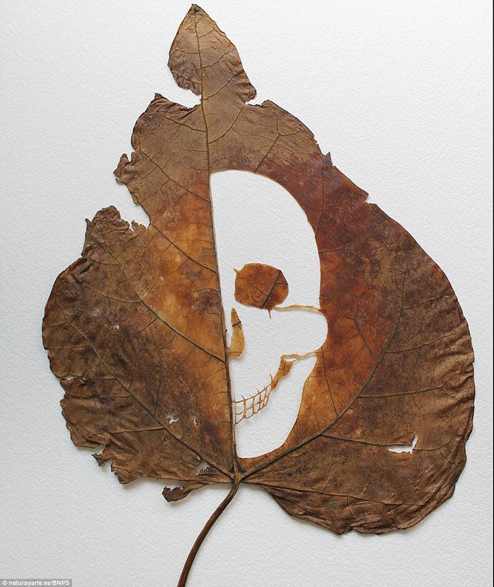 Необычные работы художника Лоренцо Дюрана