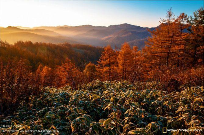 http://mtdata.ru/u1/photoE3CB/20390869964-0/original.jpg#20390869964