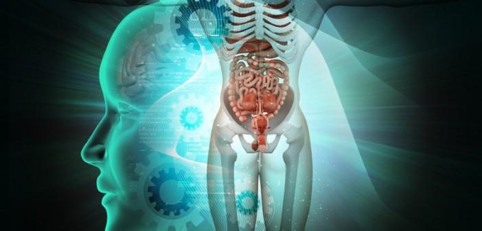 Для того, чтобы замедлить старение мозга, нужно изменить систему питания