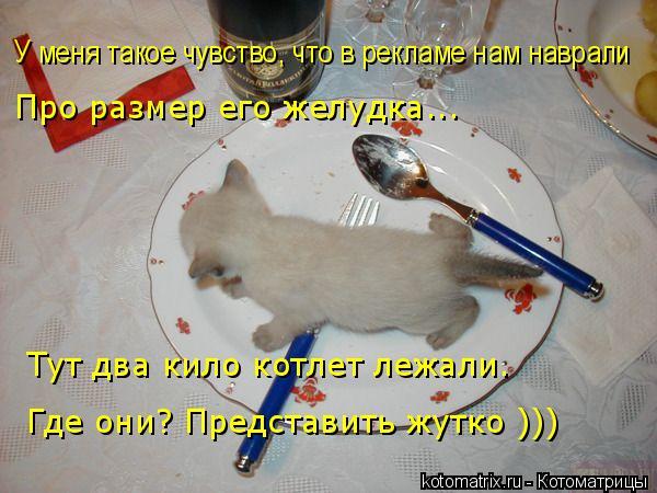 Стих что в тарелке у меня