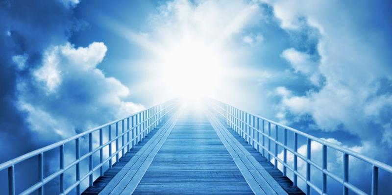 Ученые доказали, что жизнь после смерти все же существует