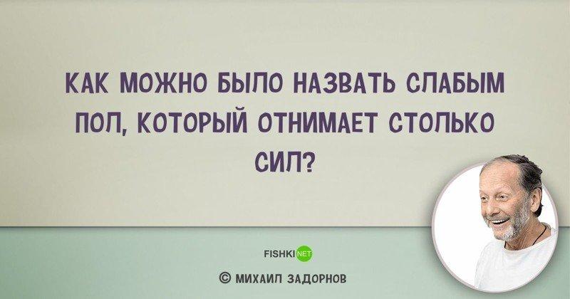 Цитаты Михаила Задорнова, над которыми мы смеялись... и не только Михаил Задорнов, задорнов, сатирик, смешно, цитаты, цитаты известных людей, цитаты юмористов